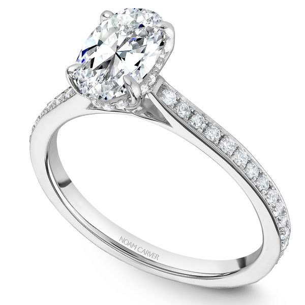 White Gold Engagement Ring With 48 Diamonds. Image 2 Barron's Fine Jewelry Snellville, GA