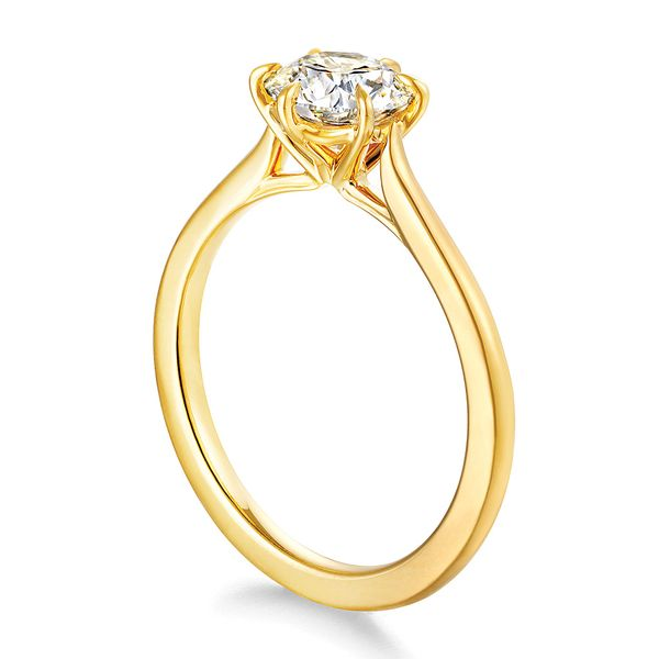 Hearts On Fire Camilla Yellow Gold Engagement Ring Setting Image 3 Bremer Jewelry Peoria, IL