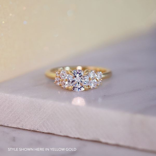 Diamond Clusters Engagement Ring Setting in Rose Gold Image 5 Bremer Jewelry Peoria, IL