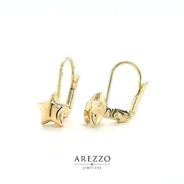 14k Yellow Gold Star Leverback Earrings Image 2 Arezzo Jewelers Chicago, IL