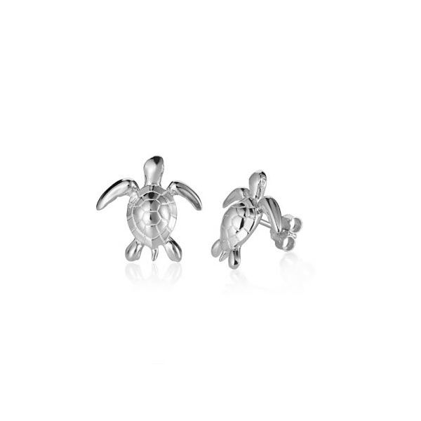 Turtle Stud Earrings Blue Water Jewelers Saint Augustine, FL