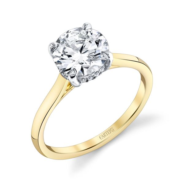 Round Brilliant Hidden Halo Solitaire Engagement Ring Image 2 Carter's Jewelry, Inc. Petal, MS