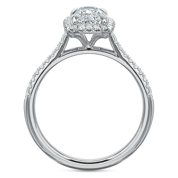 Antique Elongated Cushion Cut Halo Diamond Engagement Ring Image 5 Carter's Jewelry, Inc. Petal, MS