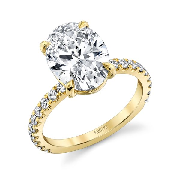 Iris Oval Cut Lab Grown Diamond Engagement Ring Image 3 Carter's Jewelry, Inc. Petal, MS