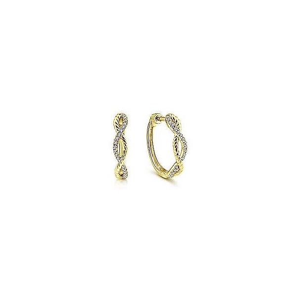 Diamond & Rope Twisted Hoop Earrings Carter's Jewelry, Inc. Petal, MS