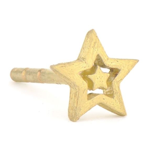 Petite Brushed Star Stud Earring Carter's Jewelry, Inc. Petal, MS