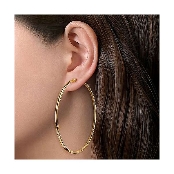 Yellow Gold Solid Hoop Earrings Image 2 Carter's Jewelry, Inc. Petal, MS