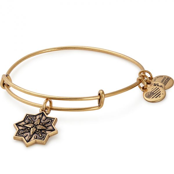 Alex And Ani Healing Love Charm Bangle Coughlin Jewelers St. Clair, MI
