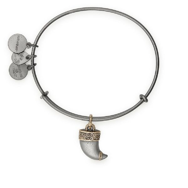 Alex and Ani Tiger's Claw Two Tone Charm Bangle Coughlin Jewelers St. Clair, MI