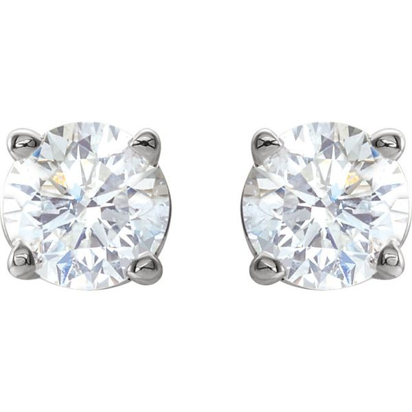 14k White Gold 1/2 CTW Diamond Studs | Select David Douglas Diamonds & Jewelry Marietta, GA