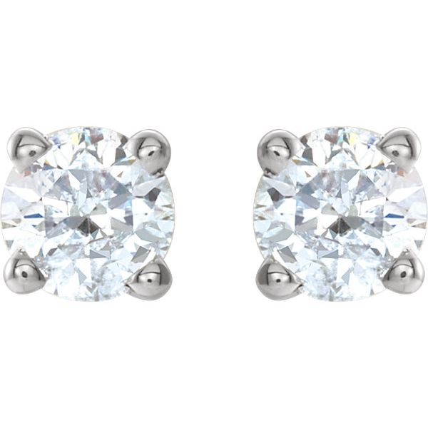 14k White 1/4 CTW Diamond Earrings | Value David Douglas Diamonds & Jewelry Marietta, GA