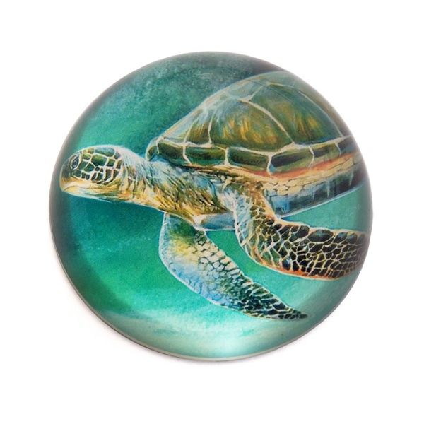 Sea Turtle Paperweight Dickinson Jewelers Dunkirk, MD