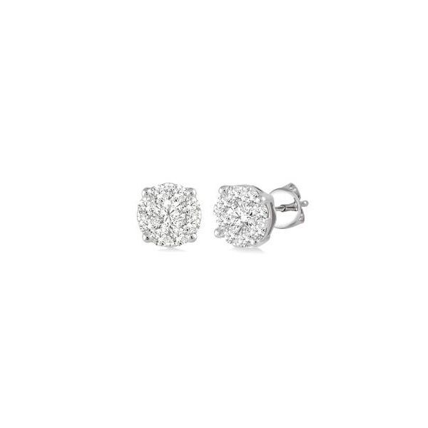 Ashi Earrings Douglas Diamonds Faribault, MN