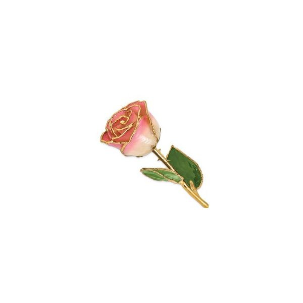 Lacquer-Dipped 24K Gold-Trimmed White Pink Rose E.M. Smith Family Jewelers Chillicothe, OH