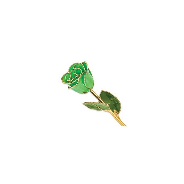 Lacquer-Dipped 24K Gold-Trimmed Geo Green Rose E.M. Smith Family Jewelers Chillicothe, OH