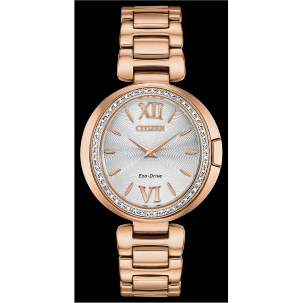 WOMEN'S CITIZEN WATCH Erickson Jewelers Iron Mountain, MI
