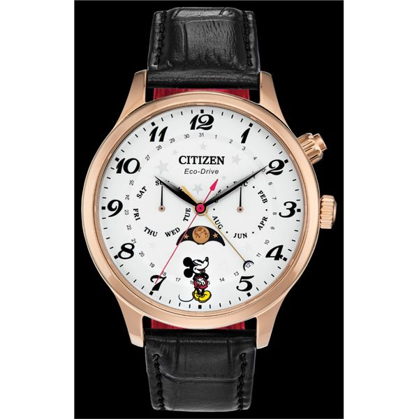 MENS WATCH DISNEY Erickson Jewelers Iron Mountain, MI