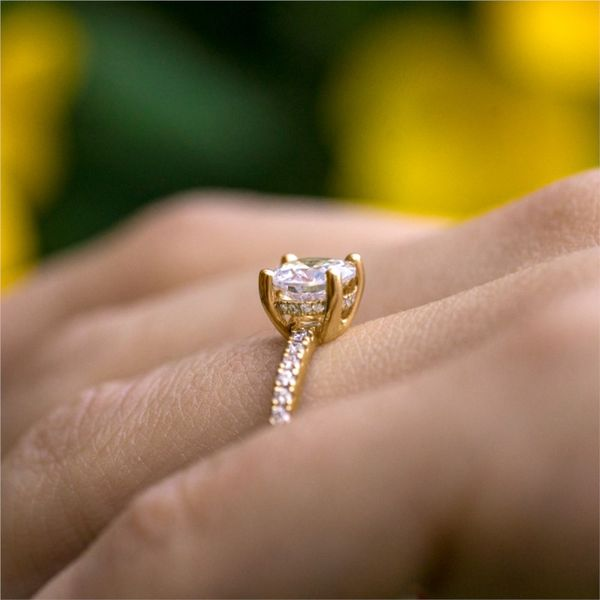 Classic Yellow Gold Surprise Diamond Ring Image 2 Fox Fine Jewelry Ventura, CA