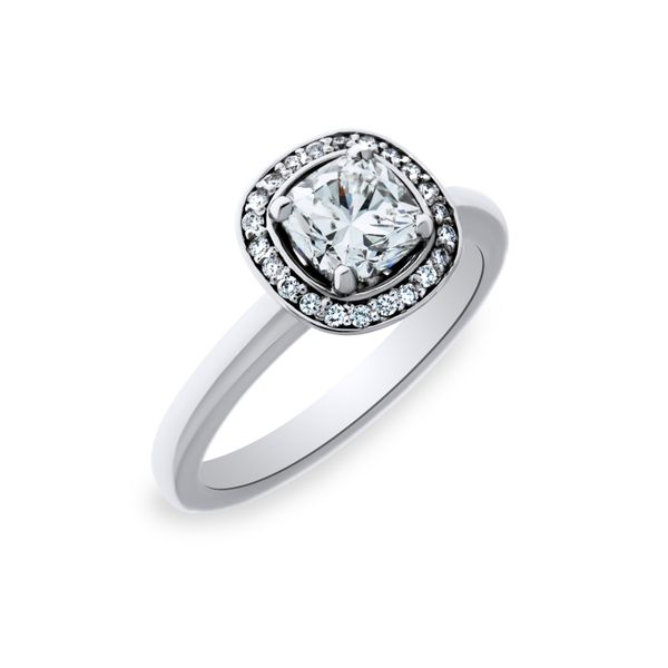 14k White Gold Ladies diamond engagement ring Georgies Fine Jewellery Narooma, New South Wales