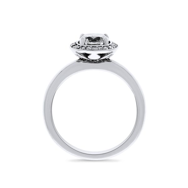 14k White Gold Ladies diamond engagement ring Image 2 Georgies Fine Jewellery Narooma, New South Wales