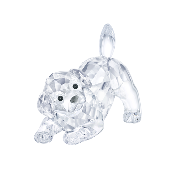 Swarovski Crystal Creations Labrador Puppy, Playing Georgies Fine Jewellery Narooma, New South Wales