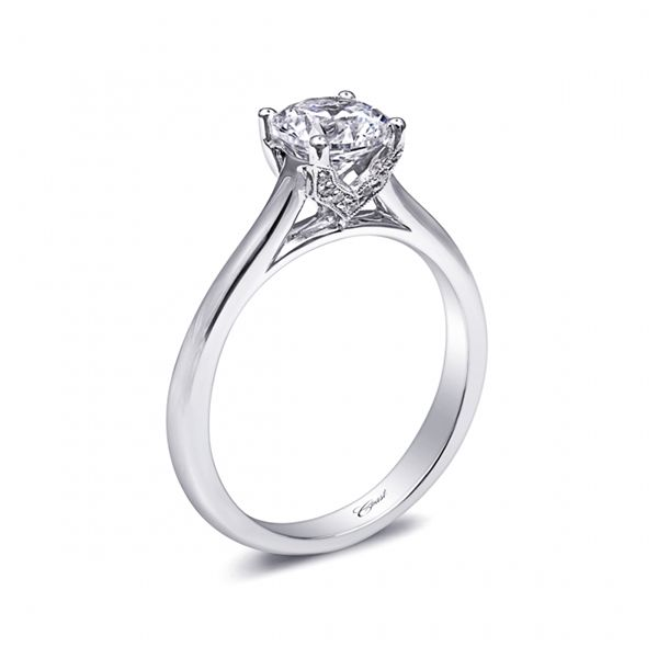 Coast Diamond Engagement Ring Image 2 Goldstein's Jewelers Mobile, AL