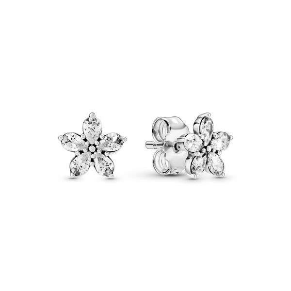 Pandora Earring Graziella Fine Jewellery Oshawa, ON