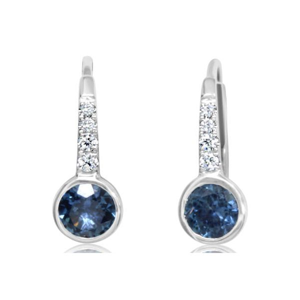Earrings H. Brandt Jewelers Natick, MA