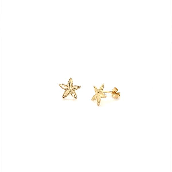 Gold Earrings Jais Providenciales,