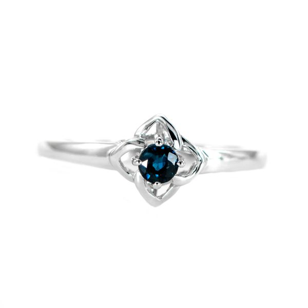 White Gold Modern Floral Design Ring with Round Sapphire J. Schrecker Jewelry Hopkinsville, KY