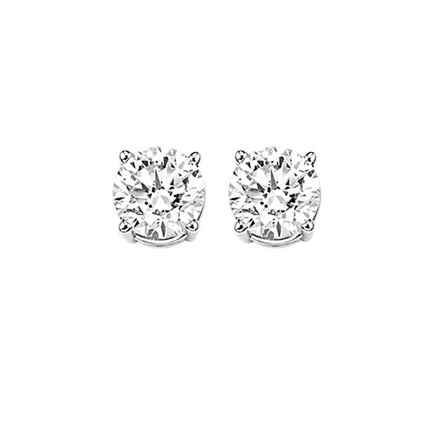 0.71Tw Diamond Earrings J. Thomas Jewelers Rochester Hills, MI