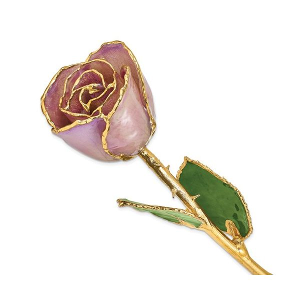 24K Gold And Lacquer Dipped Lavender Rose J. Thomas Jewelers Rochester Hills, MI