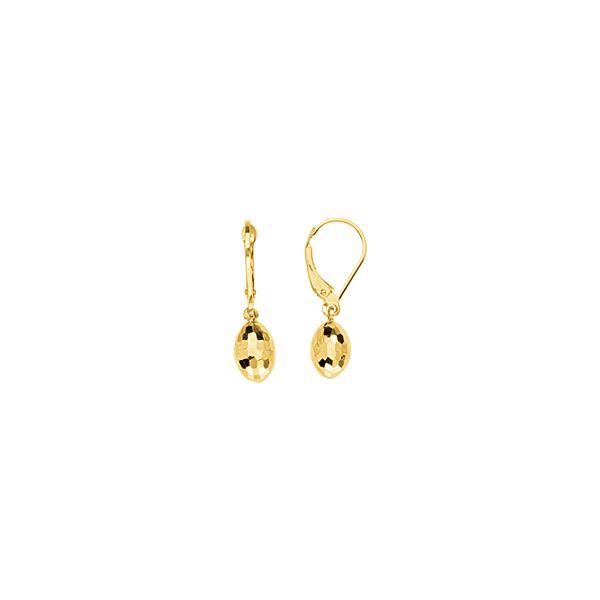 14Kt Gold Egg Shaped Lever Back Earring Lever Back Earrings