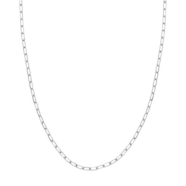 14K White Gold Diamond Cut Forzentina Chain Necklace Koerber's Fine Jewelry, Inc. New Albany, IN