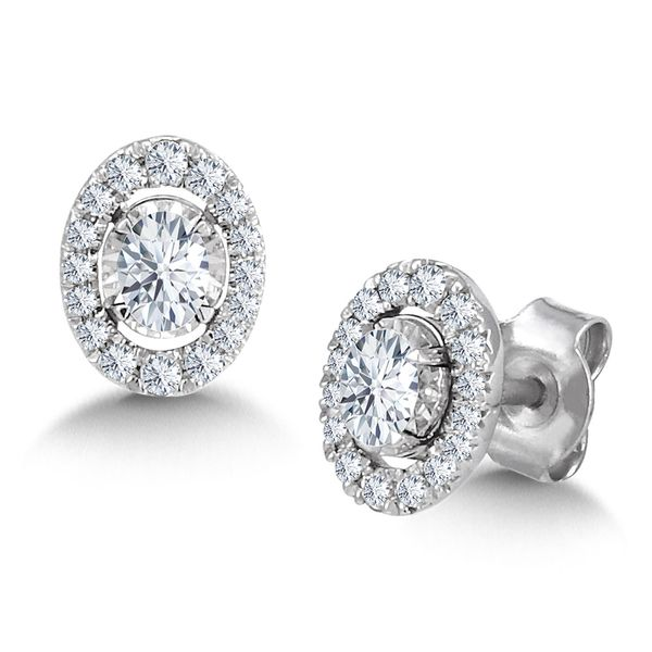 14K Diamond Oval Halo Earrings Kiefer Jewelers Lutz, FL