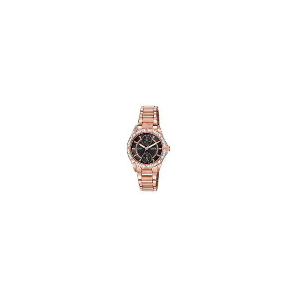 Citizen Eco Drive Ladies Citizen Watch Lee Ann's Fine Jewelry Russellville, AR