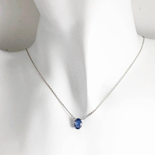 Necklace Image 2  ,