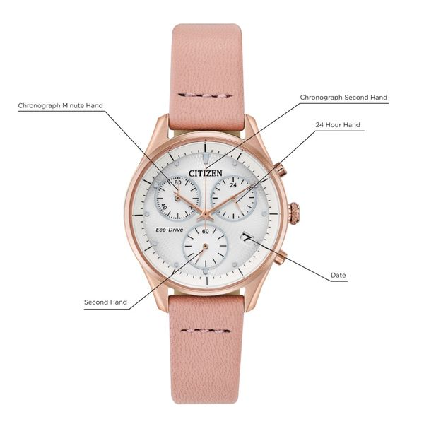 Citizen Eco-Drive Ladies' Chandler Rose Tone Watch Image 2 Peter & Co. Jewelers Avon Lake, OH