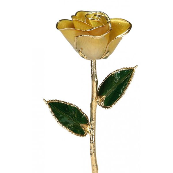 24K Roses Pineforest Jewelry, Inc. Houston, TX