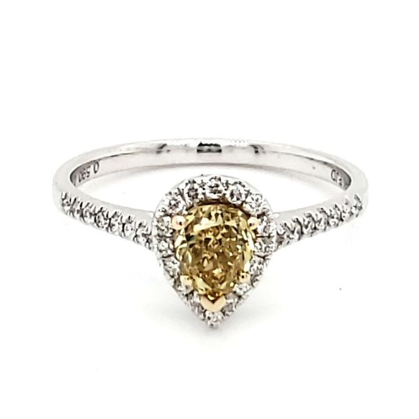 14K White Gold Yellow Pear Diamond Halo Ring Quality Gem, LLC Bethel, CT