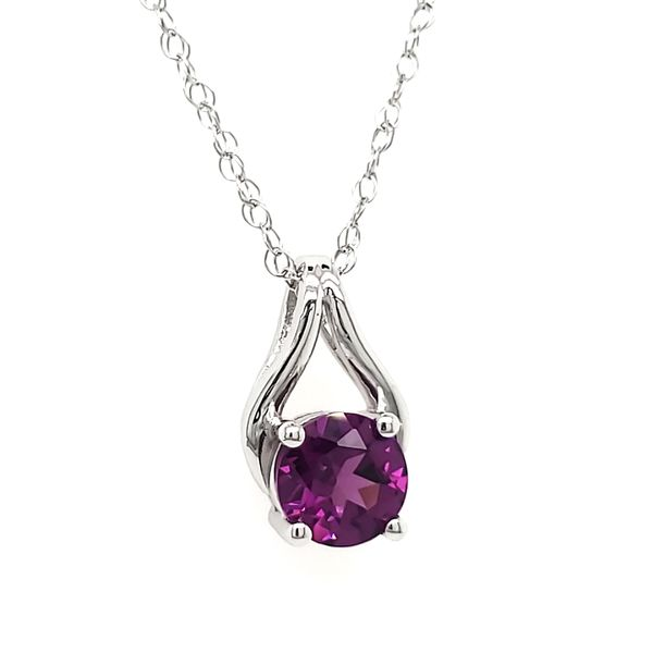 14K White Gold Purple Garnet Wishbone Pendant Image 2 Quality Gem LLC Bethel, CT