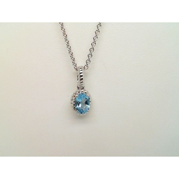 Sterling Silver Oval Blue Topaz Necklace Sanders Diamond Jewelers Pasadena, MD