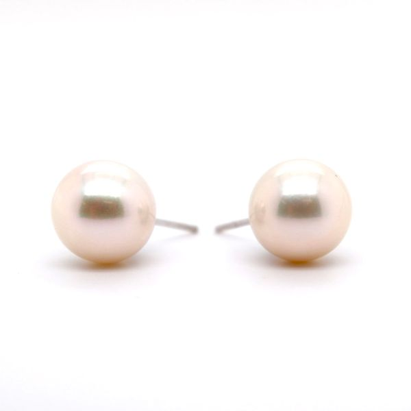 Pearl Earrings Spicer Cole Fine Jewellers and Spicer Fine Jewellers Fredericton, NB