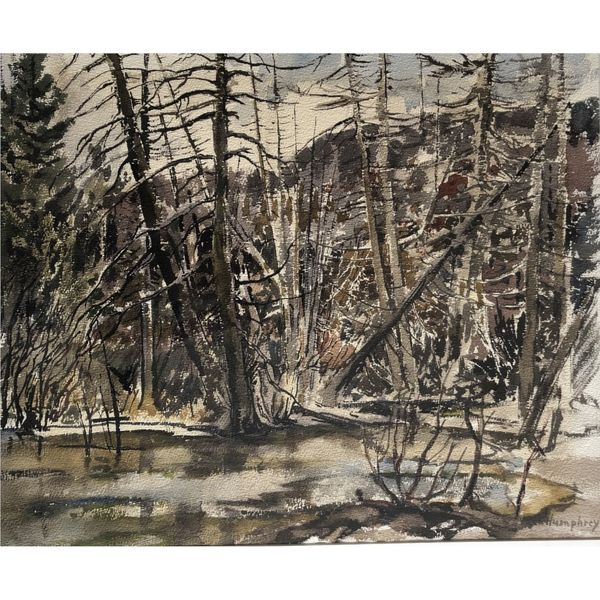 Trees & Brook Spicer Merrifield Saint John,