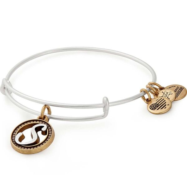 Alex and Ani Bracelet Stambaugh Jewelers Defiance, OH