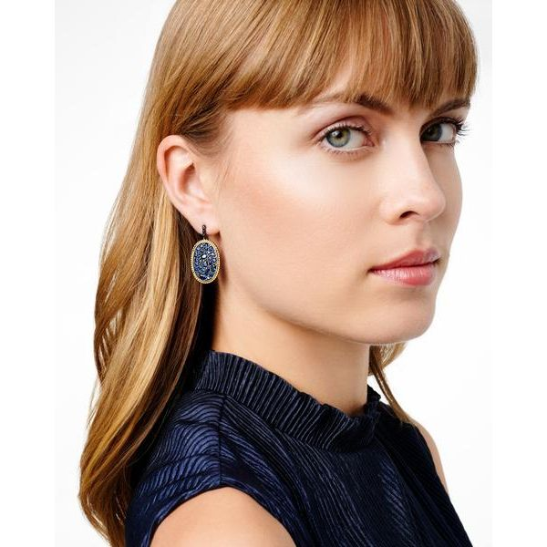 Freida Rothman Midnight Oval Statement Earrings Image 2 SVS Fine Jewelry Oceanside, NY