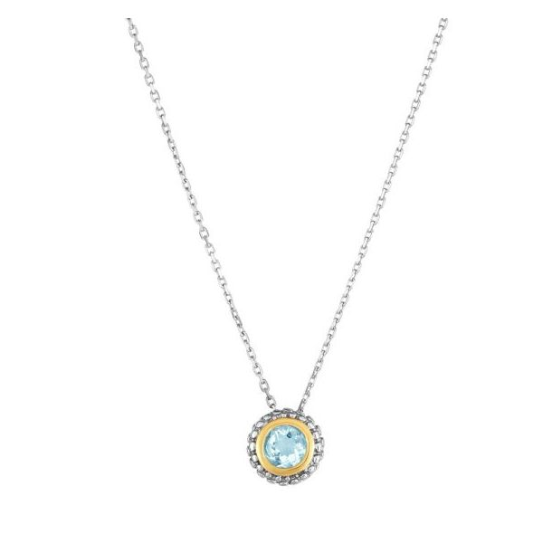 Lady's Aquamarine Sterling Silver Birthstone Necklace Texas Gold Connection Greenville, TX