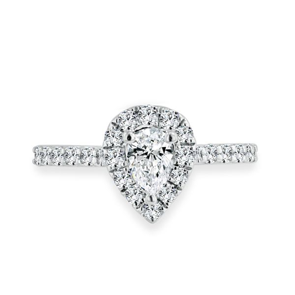 Williams Signature Diamond Engagement Ring Image 4 Williams Jewelers Englewood, CO