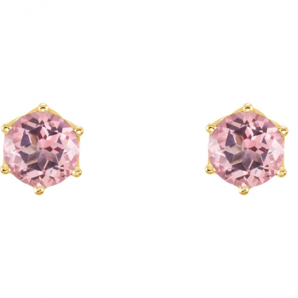 Round 6-Prong Woven Earrings  Image 2  ,