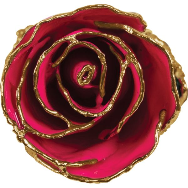 Lacquered Magenta Rose with Gold Trim Image 3 Vandenbergs Fine Jewellery Winnipeg, MB